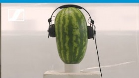 HD 25 ? The Watermelon Challenge | Sennheiser
